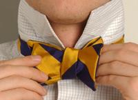 Bow Tie 7