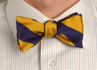 Bow Tie 8