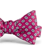 Silk Print Small Paisley Motif Bow Tie in Azalea