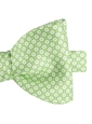 Silk Floral Motif Printed Bow Tie in Lime