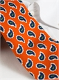 Silk Print Paisley Tie in Orange
