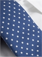 Cotton Print Dot Tie in Regal