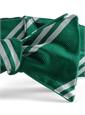 BC10- London Irish Football Club