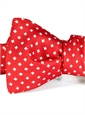Silk Print Neat Bat Bow in Red
