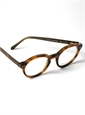 Bold Classic Frame in Brown Shell