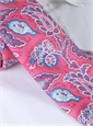 Silk Leaf Paisley Print Tie in Strawberry