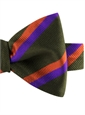Silk Multi-Color Double Stripe Bow Tie in Fern