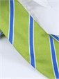 Silk Stripe Tie in Lime