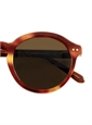 Bold Classic Sunglasses in Brown Shell