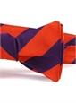 S28- Orange, Purple