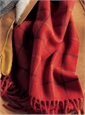 Cashmere Scarf in Ruby with Black and Camel