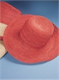 Ladies Wide-Brim Raffia Hat in Pomelo