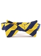 S07- Navy, Gold