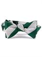 Green and White Block Stripe Tie