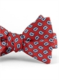 Silk Print Small Paisley Motif Bow Tie in Red