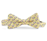 Boys Bow Tie Yellow/Pink Lady Bug