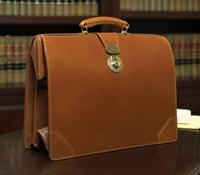 Top Frame Document Case in Hazel