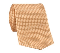 Silk Neat Printed Tie in Gold