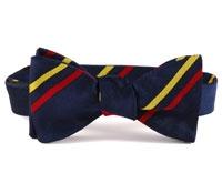 BC74- Gentlemen of Essex Cricket Club