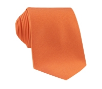 Silk Solid Signature Tie in Apricot