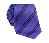 Silk Double Stripe Tie in Violet