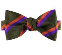 Silk Multi-Color Double Stripe Bow Tie in Fern