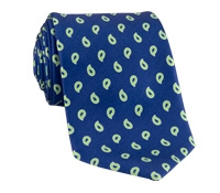 Silk Print Paisley Tie in Navy