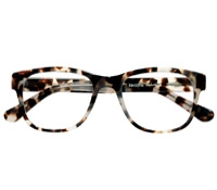 Elongated Frame in Cream Tortoise