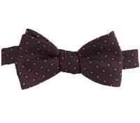 Silk Paisley Printed Bow Tie in Wine