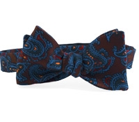 Silk Print Paisley Bow in Brown