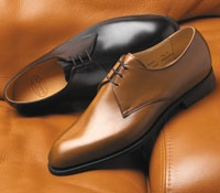 The Sherwood Blucher