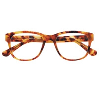 Elongated Frame in Paris Tortoise