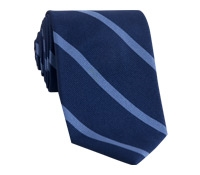 Silk Striped Tie in Denim with Persian