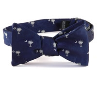 BJ221A- Palmetto and Moon in Navy and White