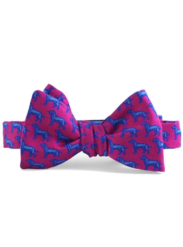 Silk Print Labrador Bow in Azalea