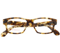 Bold Rectangular Frame in Brown Tortoise