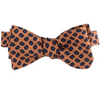 Silk Paisley Printed Bow Tie in Amber