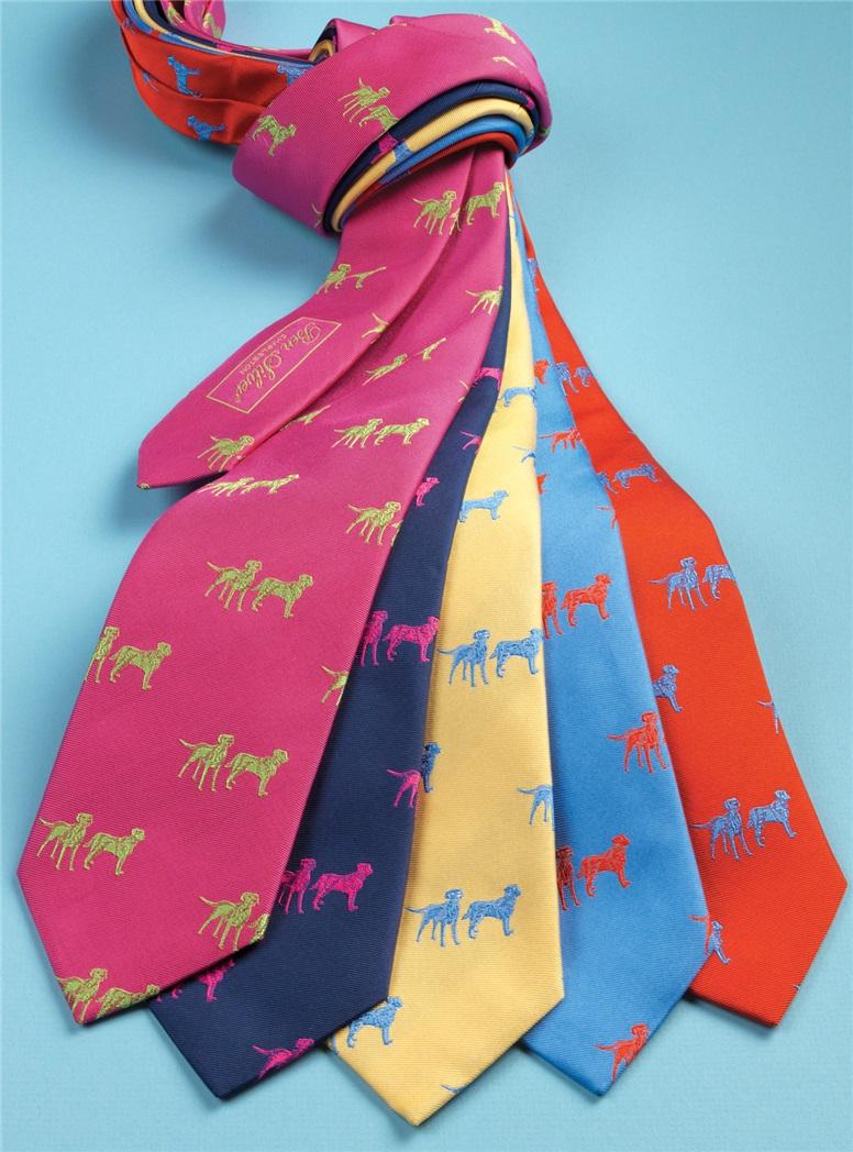 Silk Woven Lab Motif Tie in Sky