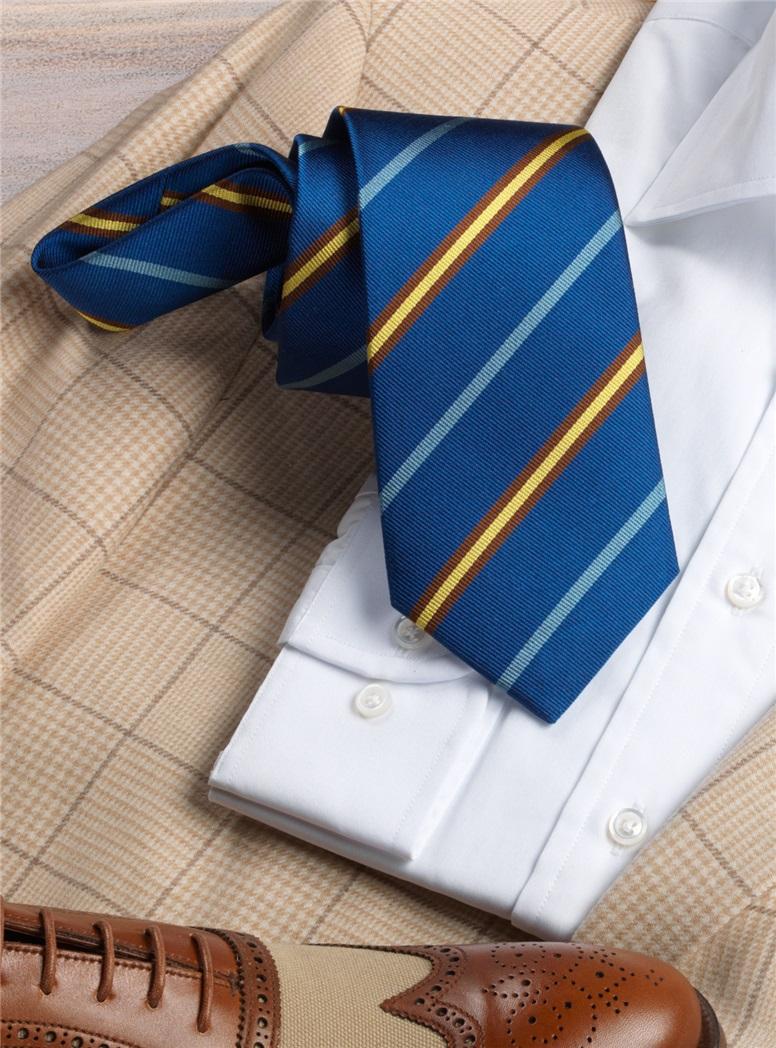 Cambridge Old Salopian Tie