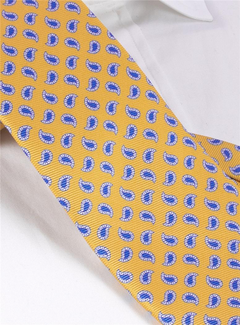 Silk Paisley Printed Tie in Sun