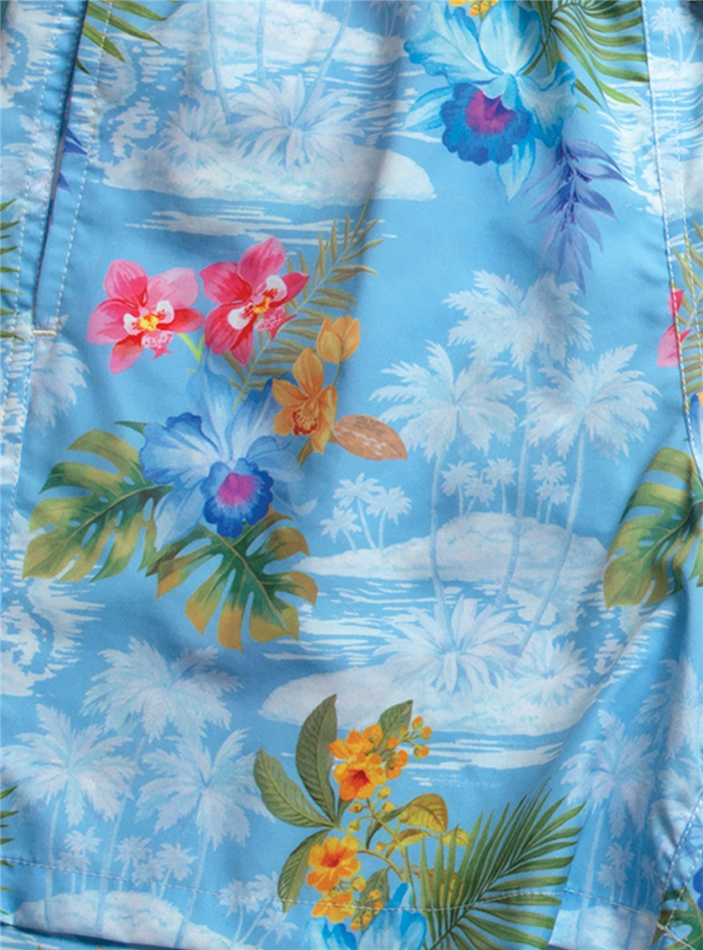 Island Printed Swim Trunks in Sky