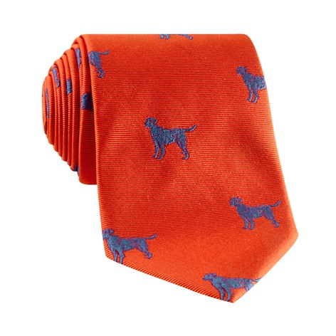 Jacquard Woven Lab Motif Tie in Tangerine and Cornflower Blue